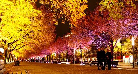 festival_of_lights_unterdenlinden1